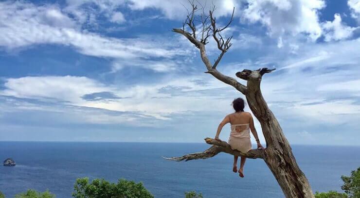 pohon-cinta-mati-nusa-penida