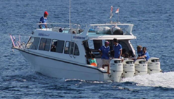 Fast Boat Mola Mola Express