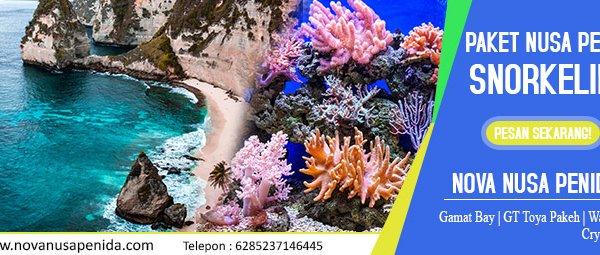 Paket Snorkeling di Nusa Penida