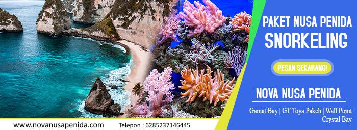 Paket Nusa Penida Snorkeling